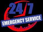 24-7 Emergency Squirrel Removal
