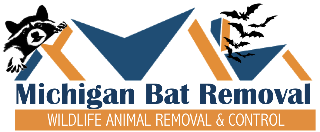 Michigan Bat Removal